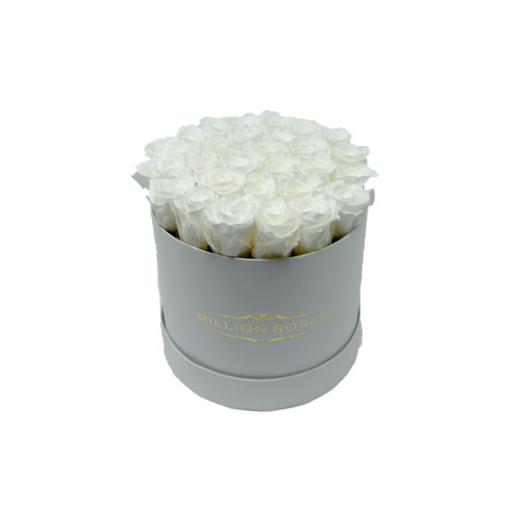 ホワイト mini ホワイトボックス